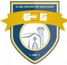 Ginástica Rítmica do Clube Desportivo Ga...